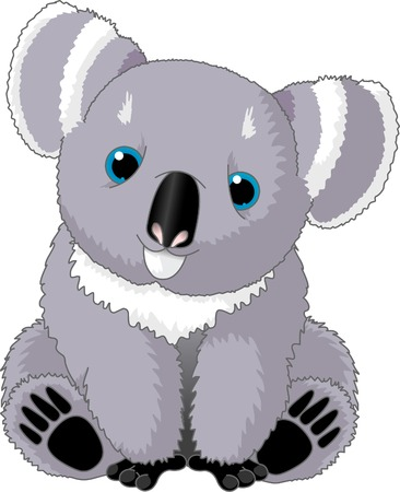 phascolarctos cinereus: Ilustraci�n de la cute sentado oso koala
