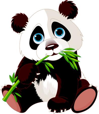 oso panda: Muy lindo Panda comer bamb�