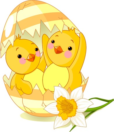 Two chickens hatched from one egg Stock Vector - 6714369