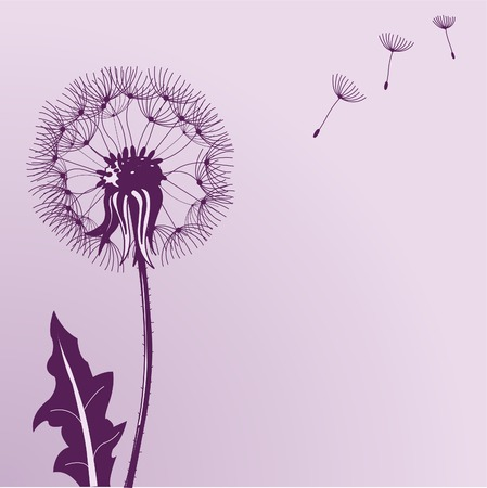 posterity: Illustration of Blow Dandelions on color background