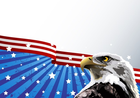 kel: Bald eagle in front of an American flag.