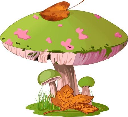 hongo: Ilustración de hongos en la hierba.  Vectores