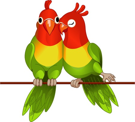 Pair of lovebirds agapornis-fischeri on white Illustration