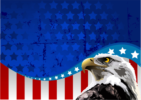 Bald eagle in front of an American flag. Stock Vector - 6870414