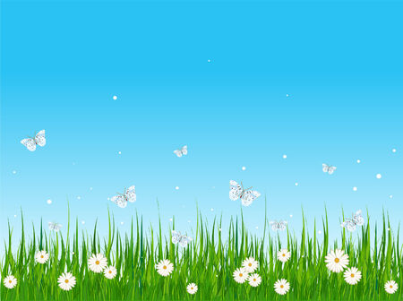 grassy: Seamless illustration of grassy field and butterflies
