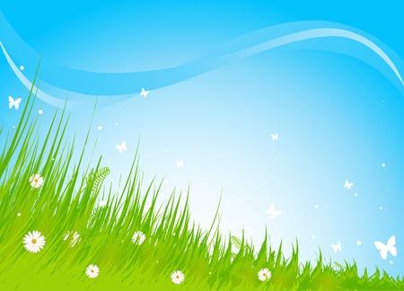 Summer grassy field and butterflies background Иллюстрация