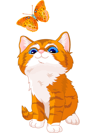 The cute kitten looking at a butterfly Stock Vector - 6951101