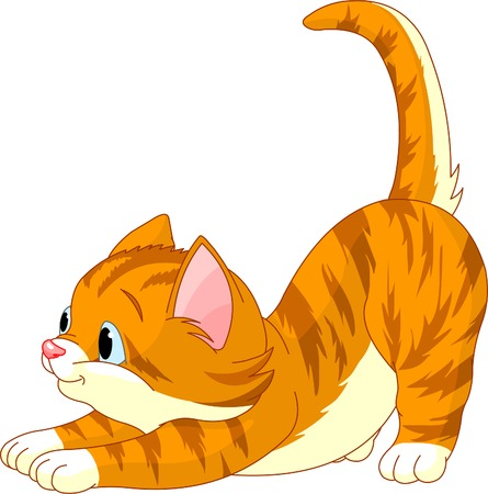 Estiramiento de gato de bonito pelo rojo sobre fondo blanco Foto de archivo - 7056670
