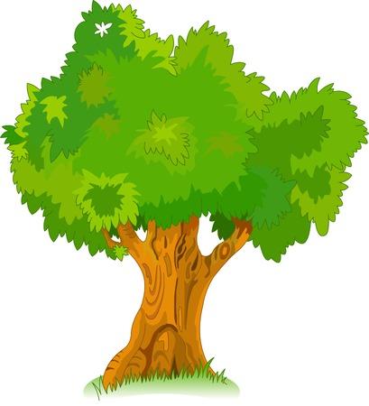Grote oude eikenboom voor uw ontwerp
