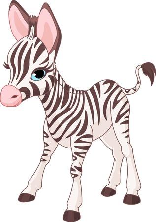 Illustratie van permanente cute zebra veulen