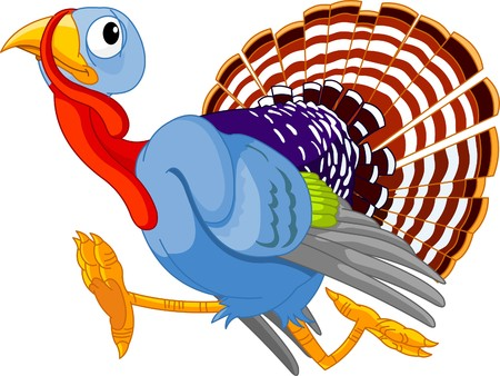 thanksgiving turkey: Cartoon turkey running, isolated on white background  Illustration