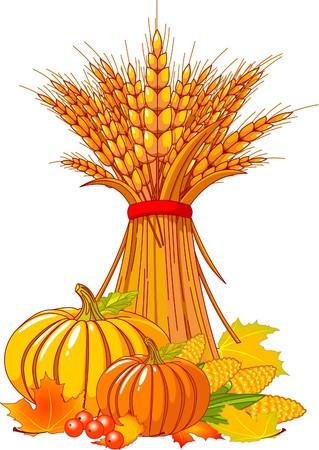 sheaf: Fondo estacional con calabazas rechoncho, trigo, ma�z y hojas de oto�ales  Vectores