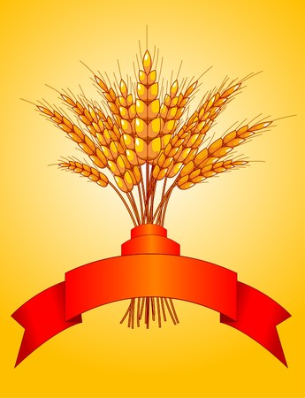 ribbon pasta:  Illustration desing of ears of wheat on yellow background