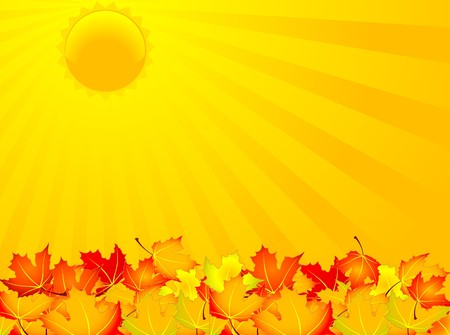 Autumn sunny day background. Global colors. Vector