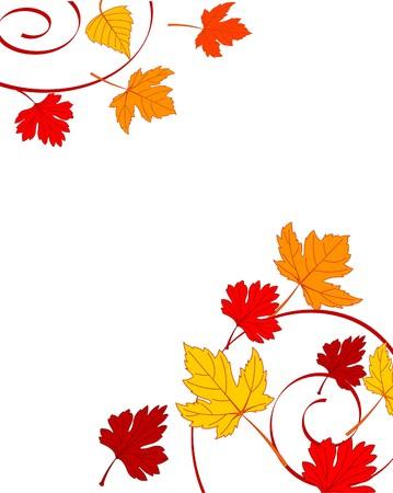 Hojas de otoño ornamento con arce Foto de archivo - 7879528