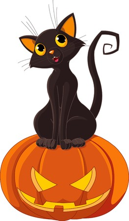 halloween cartoon: Black  cat sitting on Halloween pumpkin