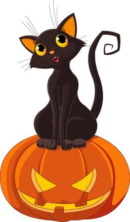 citrouille halloween: Chat noir assis sur la citrouille Halloween Illustration