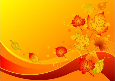 Mooie achtergrond met kleurrijke herfst bladeren