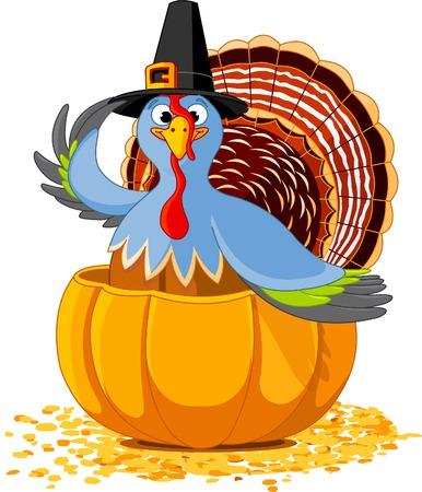 p�lerin: Illustration d'une dinde de Thanksgiving avec chapeau de p?lerin dans la citrouille Illustration