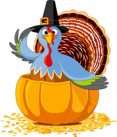 fall harvest: Illustration of a Thanksgiving turkey with pilgrim hat in the  pumpkin