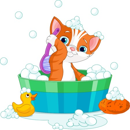 pet grooming: Very cute  cat having a soapy bath