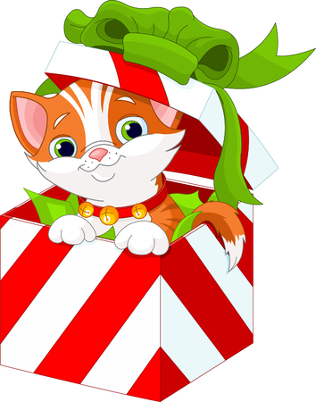 christmas gift box: Cute kitten in a Christmas  gift box