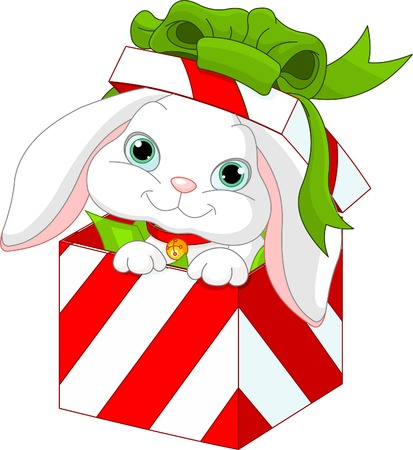 christmas gift box: Cute bunny in a Christmas  gift box
