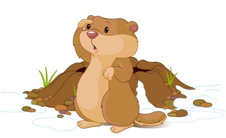 groundhog: Illustration for Groundhog Day. Groundhog looking at his shadow.   Illustration