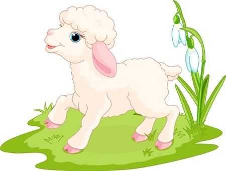 cartoon sheep: Spring background with Easter lamb and flowers
