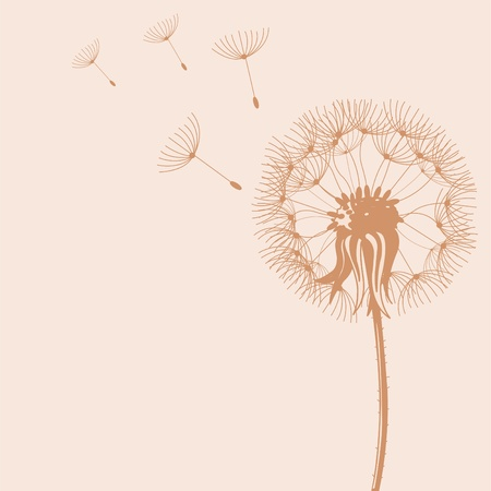 Illustration of Blow Dandelions on color background Vector