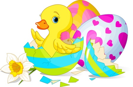 Easter duckling sitting in the broken Easter Egg.