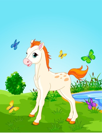 Horse foal  in the meadow  on a sunny day. Background is separate paths and can be moved or removed. Ilustracja