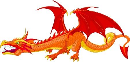 dragones: Ilustraci�n de un hermoso drag�n rojo detallado  Vectores