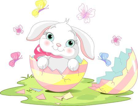 Easter bunny sitting in the broken Easter Egg. Vector