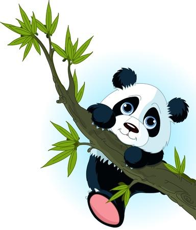 Very cute panda climbing tree