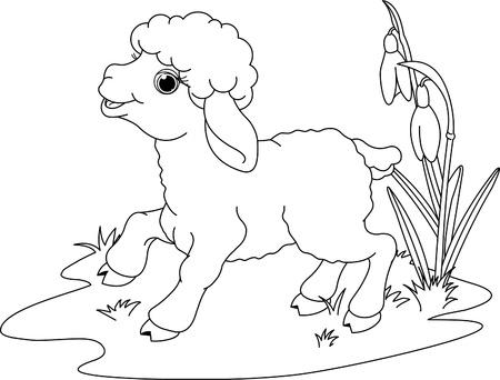 lamb: Agnello Pasquale sul prato. Coloring page Vettoriali