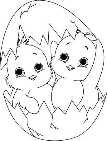 hatched:  Two Easter chickens hatched from one egg. Coloring page Illustration