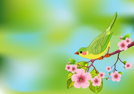 Cute bird sitting on blossom tree branch Vector