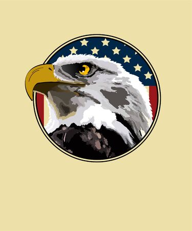 Eagle on a background of the American flag Illustration