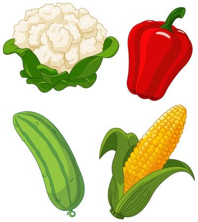 mazorca de maiz: El colorido conjunto de verduras