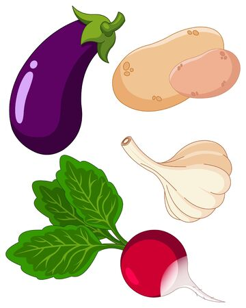 The  colorful set of vegetables Vector