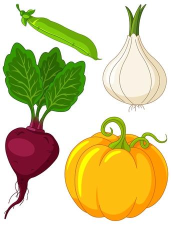 El colorido conjunto de verduras Foto de archivo - 9633420