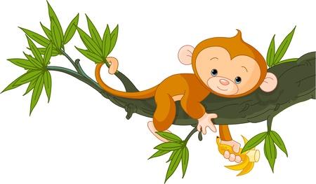 Cute baby monkey on a tree holding banana  Vector
