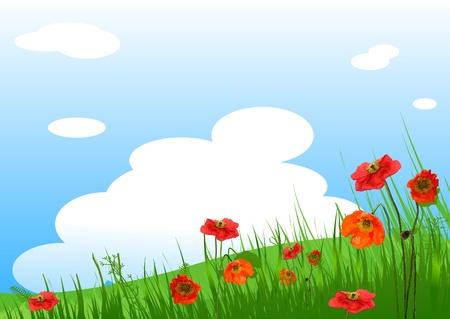 Campo de césped de verano y fondo de flores de adormidera Ilustración de vector