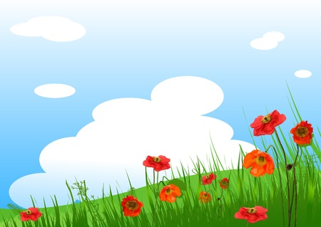 Summer grassy field and Poppies flowers background 向量圖像