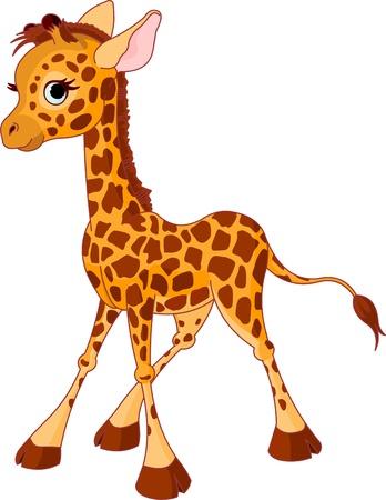 jirafa: Ilustración de jirafa divertida poco becerro