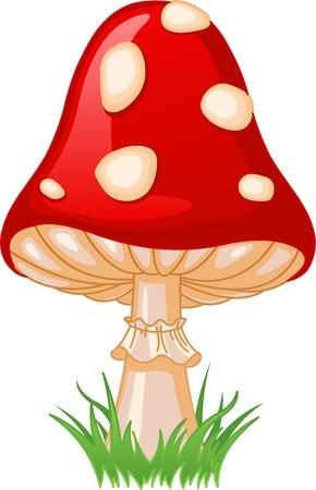 Illustratie van Mushroom Amanita in een gras