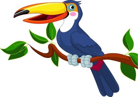 aves caricatura: Ilustración de tucán, sentado en la rama de un árbol