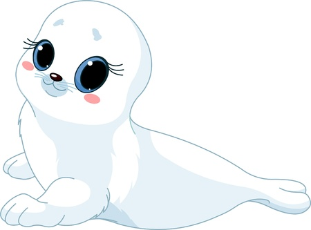 seals: illustration of cute  baby  seal.