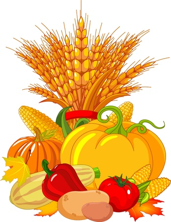 seasonal design with plump pumpkins, wheat, vegetables and autumn leaves Vector